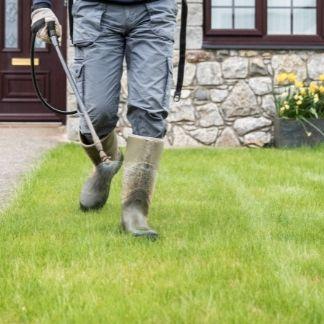 lawn treatment service round 4